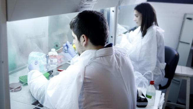 Científicos de la Universidad Nacional de La Plata, trabajando en investigaciones.