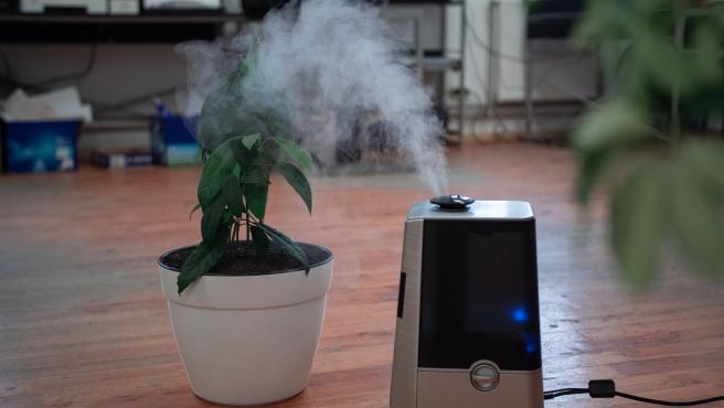 Combate la contaminación del hogar para mejorar la calidad del aire.