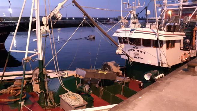 Barco de pesca en el Puerto de Bermeo (Bizkaia)