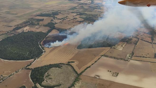 Vista aérea de un conato de incendio en zona forestal en Es Pagos, Porreres, este junio.