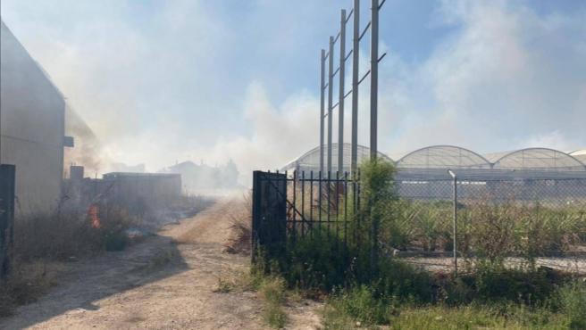 Incendio que se ha reactivado en la zona de Soto de Medinilla, en Valladolid capital.