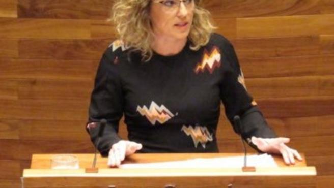 La diputada de Ciudadanos, Susana Fernández.