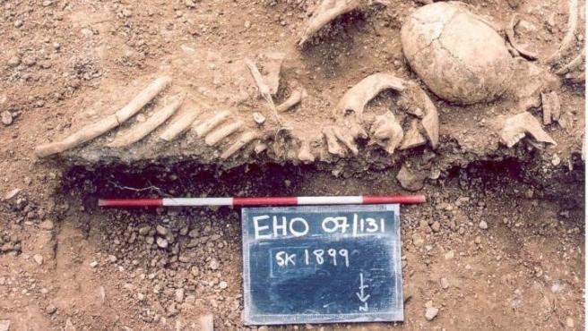 Restos de vikingos del siglo X encontrados en una fosa común en el St John's College de Oxford. Restos de vikingos del siglo X encontrados en una fosa común en el St John's College de Oxford. 22/7/2020