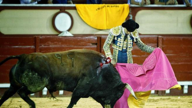 Un torero durante una corrida de toros en una imagen de archivo.