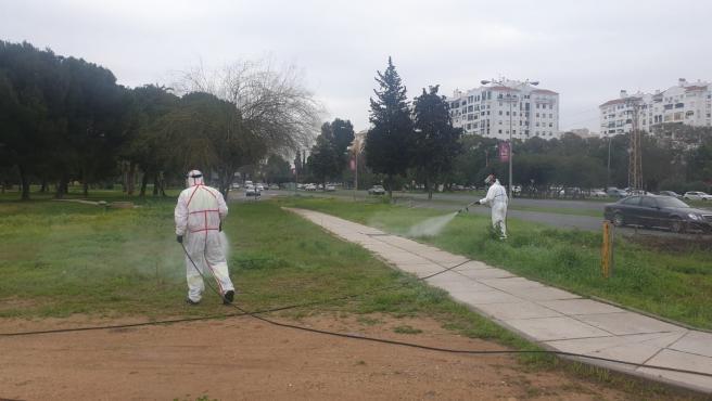 Trabajadores del Zoosanitario del Ayuntamiento de Sevilla