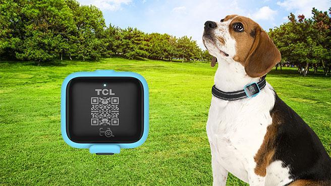 El Movetrack trackea al instante la ubicación de la mascota perdida