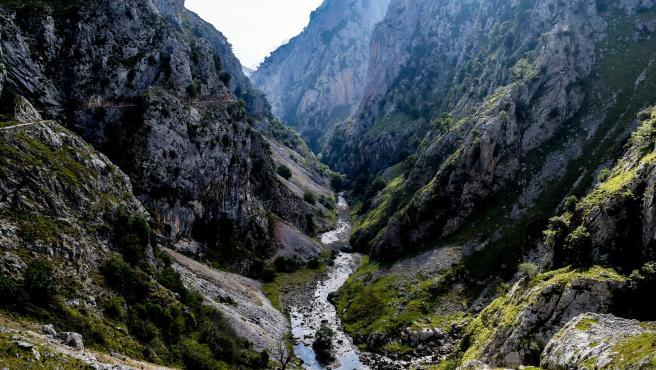 Es una ruta de gran éxito y supone la puerta de entrada a los Picos de Europa. Se la conoce popularmente como la Garganta Divina debido a que el río Cares viaja encajonado entre las montañas. Es muy recomendable.