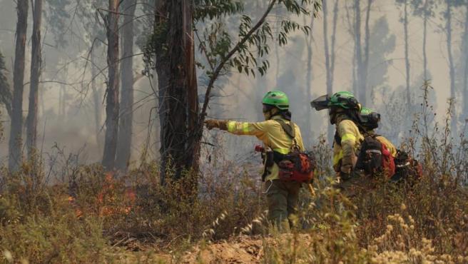 Imagen de bomberos sofocando el incendio en Huelva.
