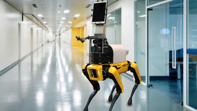 El robot puede tomar las medidas de los signos vitales de los pacientes.