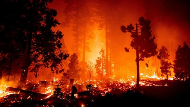 Un incendio quema el bosque cerca de Shaver Lake, en el Bosque Nacional Sierra, en California, EE UU.