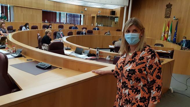 La portavoz del PP en la Diputación de Granada, Inmaculada Hernández