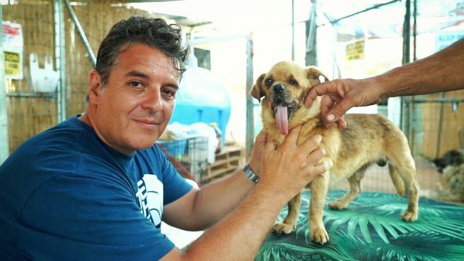 El acusado por supuesta estafa de unos 700.000 euros a través de donativos para animales heridos, Viktor Larkhill.Supuesta estafa con donativos para animales heridos y moribundos.