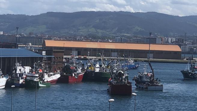 Entrada de barcos pesqueros de bocarte en El Musel