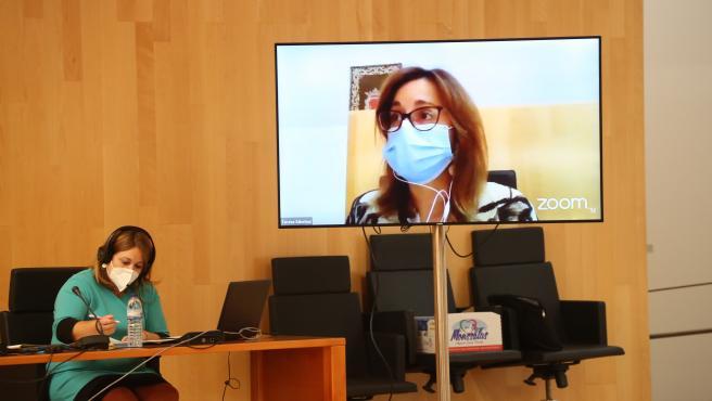 La diputada portavoz de Adelante Málaga, Teresa Sánchez, en el último pleno de la Diputación de Málaga de septiembre de 2020