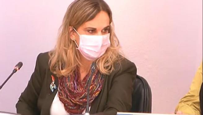 La valedora do Pobo, María Dolores Fernández Galiño, en comparecencia en comisión parlamentaria