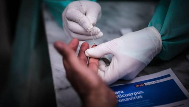 Obteniendo una muestra de sangre para realizar un test serológico de anticuerpos de la Covid-19.