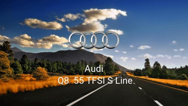 Audi Q8 55 TFSI S Line
