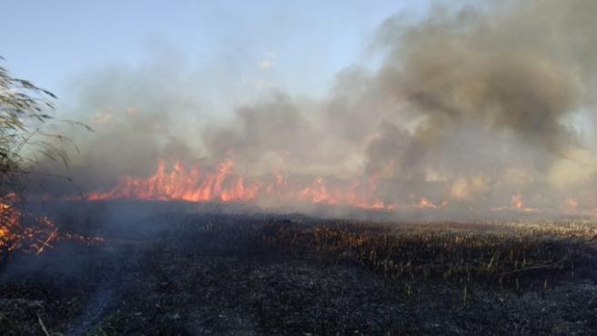 Imagen del incendio de s'Albufera.