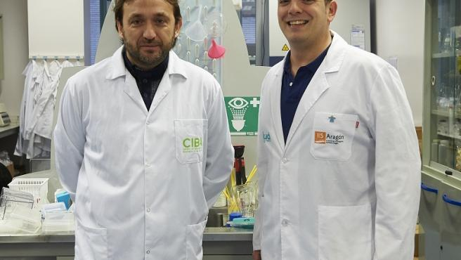 Aspanoa convoca 75.000 euros en ayudas para la investigación del cáncer infantil.