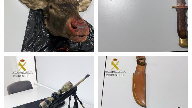 Imagen de las armas y de la cabeza de venado intervenida
