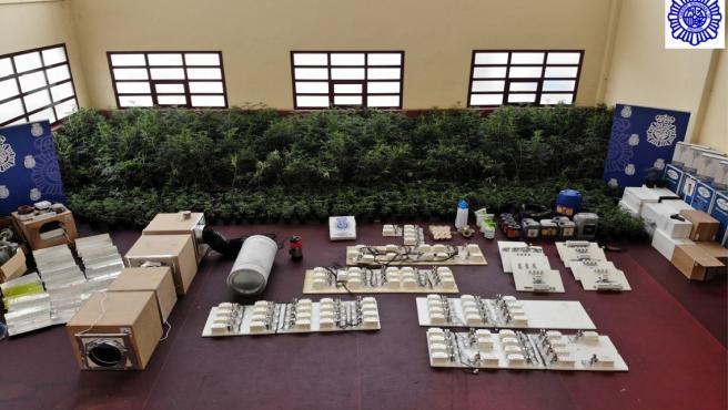 Imagen del material incautado en uno de los mayores laboratorios de cultivo interior de marihuana en Palencia.