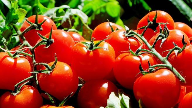 Es un alimento antioxidante que se encarga de proteger a las neuronas, por lo que siempre es una buena idea incluirlo en la dieta y comerlo de manera frecuente.