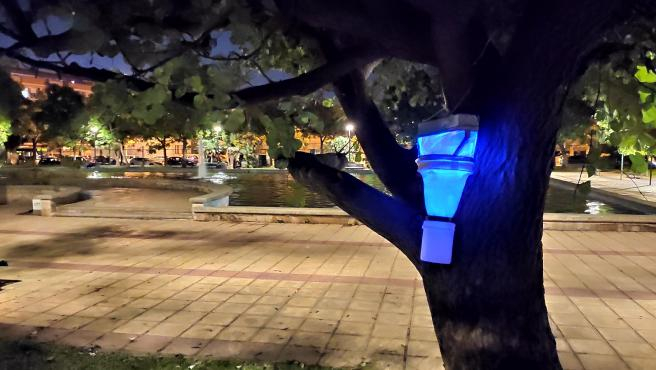 Trampas instaladad en uno de los parques de la ciudad para el estudio de la UIB.