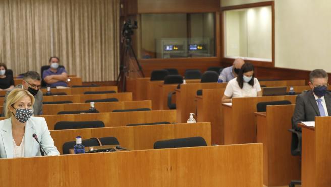Comisión COVID C-LM en Cortes.