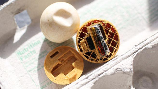 Los huevos falsos de tortuga llevan un dispositivo GPS-GSM