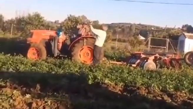 Imagen de Antonio y Andrés, los dos agricultores que discuten en un vídeo viral.