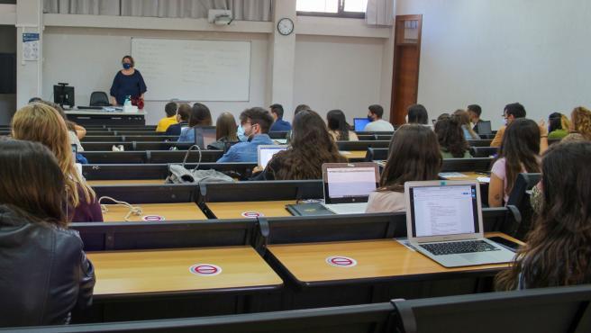 Alumnos de la UIB.