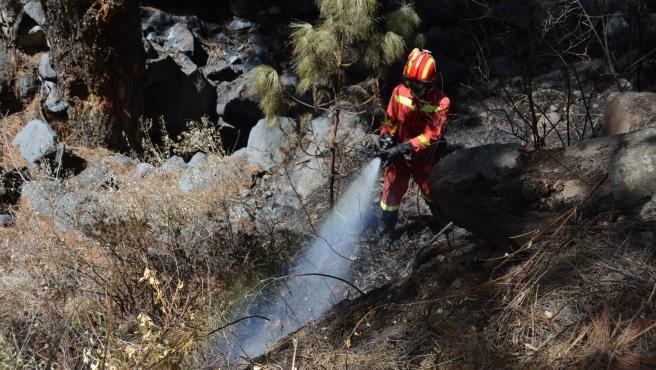 El Cabildo de La Palma da por extinguido el incendio forestal de Garafía declarado el pasado 21 de agosto