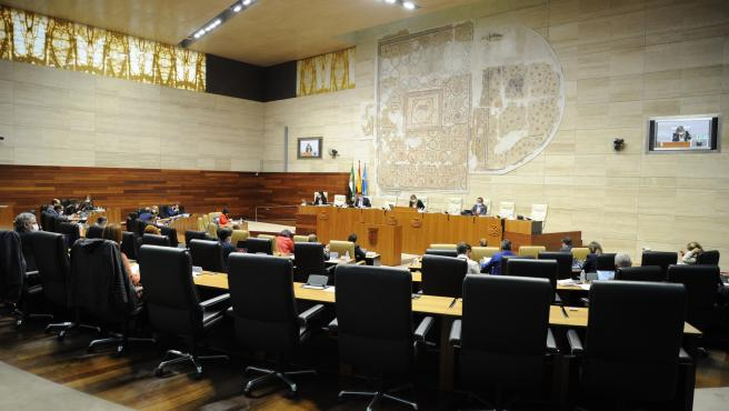 PSOE y Unidas por Extremadura rechazan una propuesta del PP y Cs en defensa de la educación especial