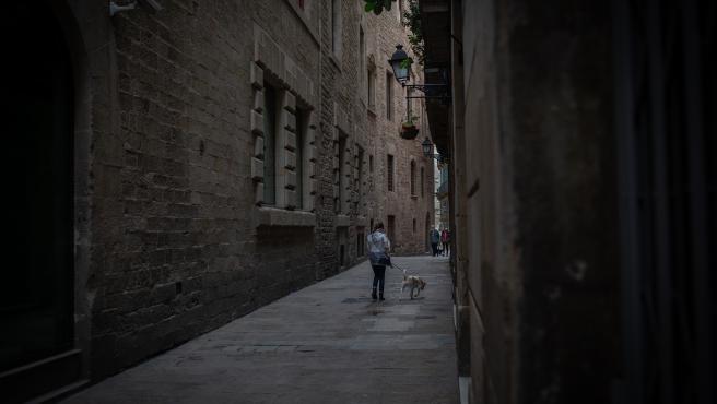 Una persona paseando a un perro en Barcelona.