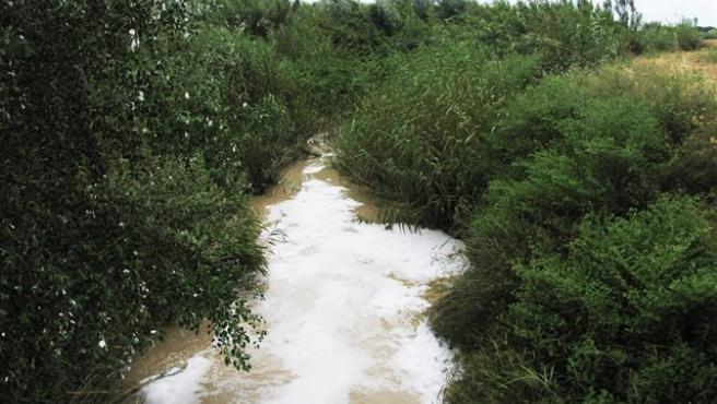 Imagen de archivo de un arroyo en la comarca del Aljarafe