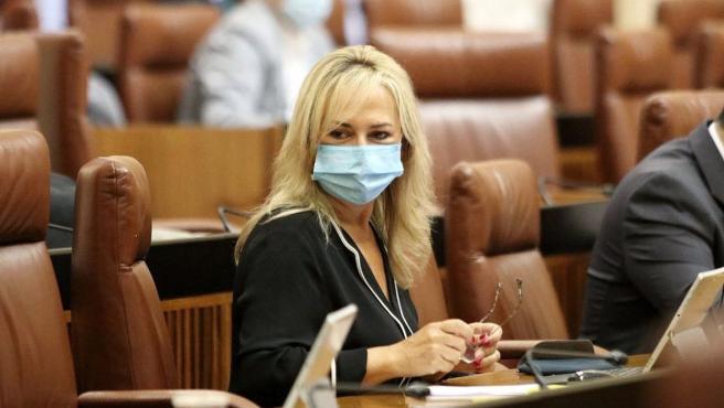 Sevilla.-Coronavirus.-Llopis:'El impulso de Cs al Hospital Militar permitirá mayor capacidad asistencial en esta ola'