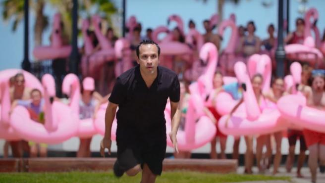 Fotograma de 'The Mystery of the Pink Flamingo'