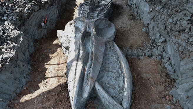 Descubren el fósil casi intacto de un cetáceo de 3.000 años cerca de Bangkok.