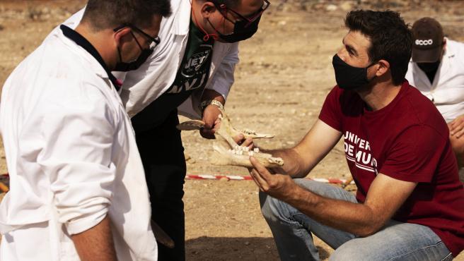 Imagen del proyecto 'Desenterrando prejuicios'