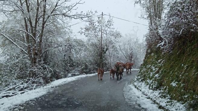 Nieve en Asturias el 30 de marzo