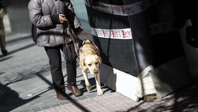 Una persona ciega camina con su perro guía.