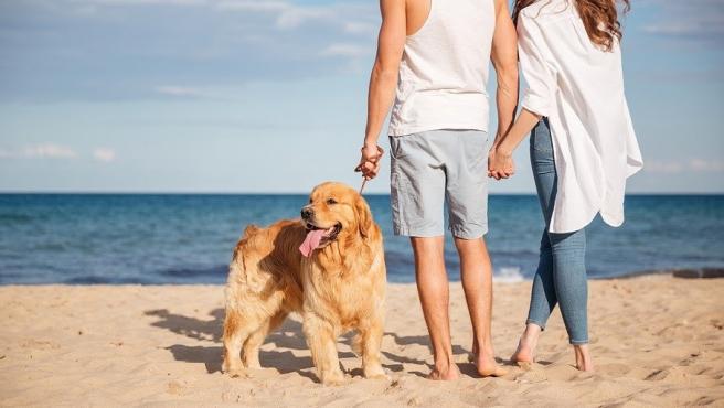 Una pareja pasea a su perro en la playa