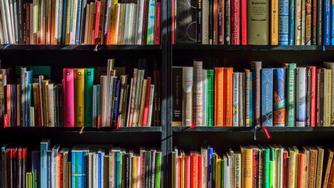 Los libros siempre son buenos compañeros en casa, pero en la habitación habría que reducirlos. Acumulan mucho polvo y si no se limpian a menudo pueden darte una reacción.