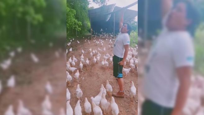 Tener una granja de gallinas es algo muy sacrificado, pues hay que alimentarlas, cuidarlas, acordonar un espacio para ellas y recoger sus huevos. Pero la compañía de estos animales también puede brindar momentos memorables, y Marcelo Paredes así lo demuestra. Este joven tiene decenas de gallinas, tantas que casi siente como si tuviera un ejército. Pero no solo por la cantidad, sino también por todo lo que lo obedecen. Por ello, este tiktoker decidió aprovechar su granja para subir vídeos en los que parece que capitanea al mismísimo ejército espartano de la película 300.