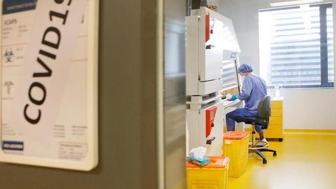 una-cientifica-espanola-trabaja-en-una-vacuna-que-podria-ofrecer-proteccion-contra-la-covid-durante-anos