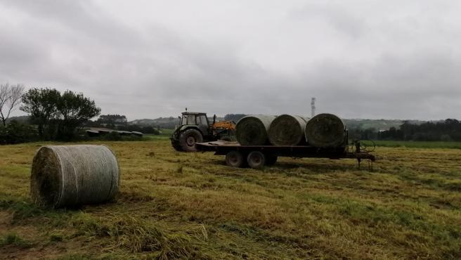 Trabajos en el campo, rural, agricultura, PAC, tractor.