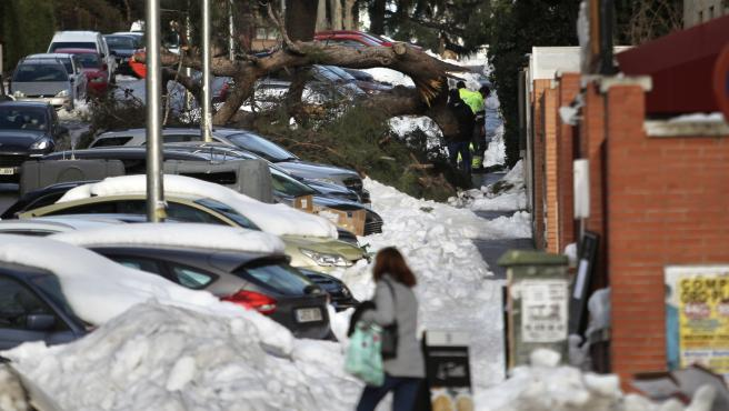Estado de las calles de Madrid diez días después de la nevada