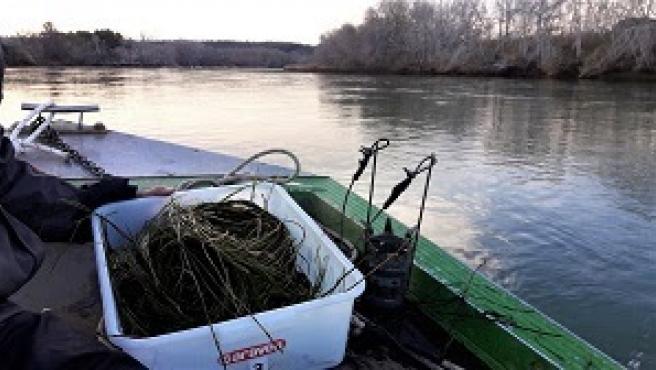 Endesa regula el caudal del Ebro para facilitar el tratamiento que permite reducir la mosca negra