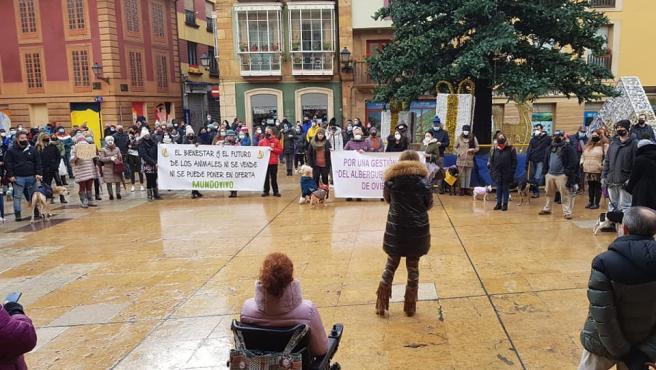 Movilización en defensa del albergue de animales municipal.