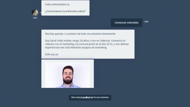 CV online de David Vidal.